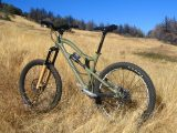 dviratis-ral-6013-spalva-reed-green