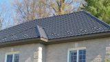 antracito spalva ral-7016 stogo danga